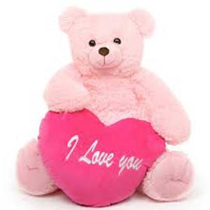 Valentine Teddy Soft Toys Patiala, India