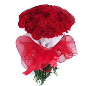 Carnations Bunch Red: Gift Bhopal,  India