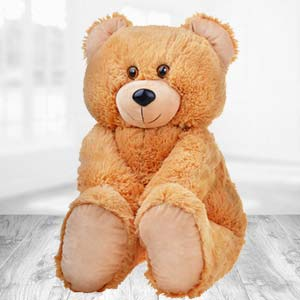 Teddy Bear 2 Feet: Gift Ajmer,  India