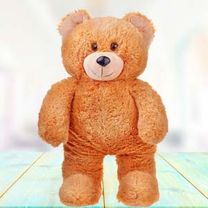 3 Feet Teddy Bear: Gift Bhatinda,  India