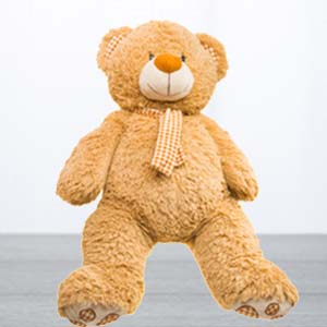 5 Feet Standing Teddy Bear: Gift Kolkata,  India