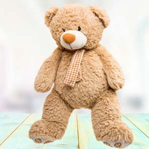 Big Teddy Bear (5 Feet): Gift Banaras,  India