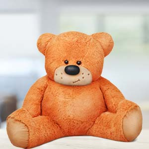 5 Feet Sitting Teddy Bear: Gift Chandigarh,  India