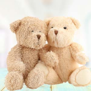 Valentine Combo (Teddy Day): Gift Guwahati,  India