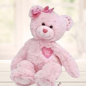 Pink Teddy: Soft-toys  India