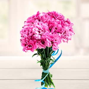 Carnations Bunch: Gift Allahabad,  India