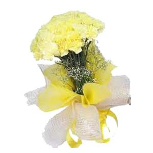 Yellow Carnation: Gift Ambala Cantt,  India