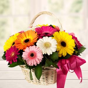 Handle Basket Of Mix Gerbera: Gift Gorakhpur,  India