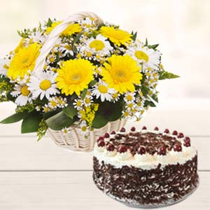 Gerbera With Black Forest Cake: Gifts For Her Jalandhar,  India