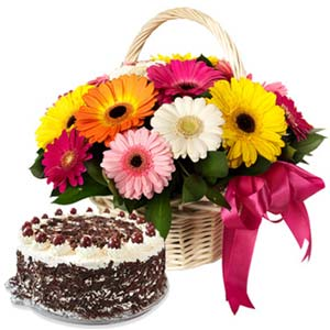 Mix Gerbera With Black Forest Cake: Gifts For Her Rohtak,  India