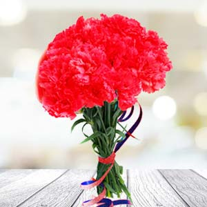 Red Carnations: Gift Sonipat,  India