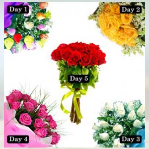 5 Roses bunch of days Serenade Flowers Chocolate With Roses, India
