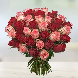 Red & Pink Roses: Birthday  India
