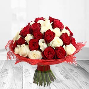 Mixed Red And White Flowers: Rose Day Faridabad,  India